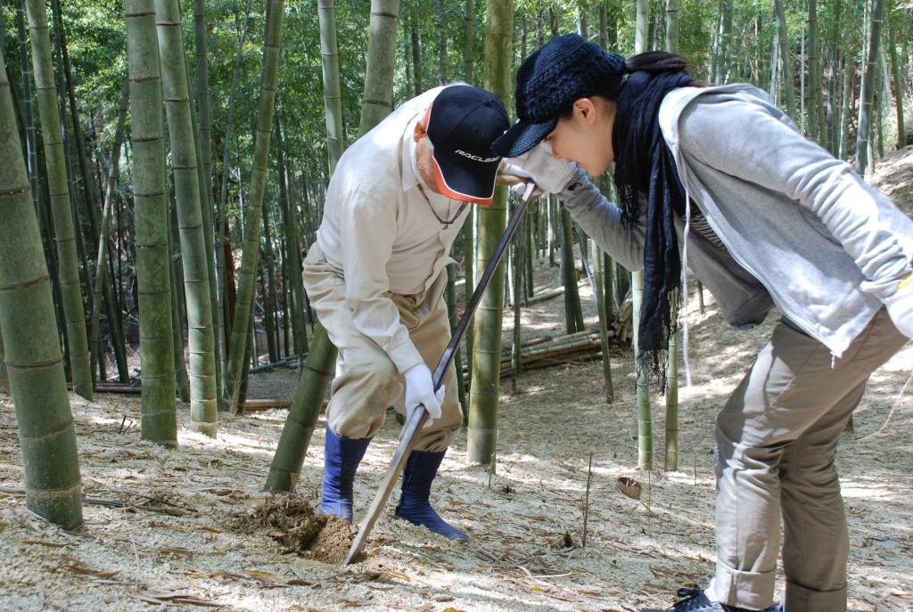 「たけのこほり」 京都 山城町 | 奈良町宿の日々 | 奈良町宿 ...